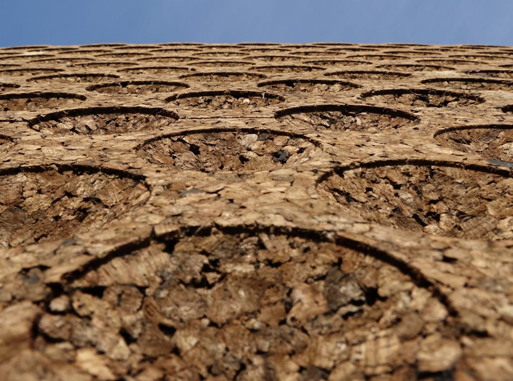 This image has an empty alt attribute; its file name is Cork-Facade-closeup-01-1024x760.jpg